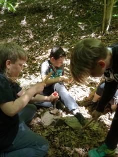 Učení v přírodě - 4. třída